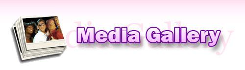 media-gallery.jpg